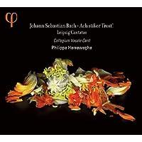 J.S. Bach: Leipzig Cantatas