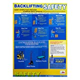 "National Marker PST001 NMC Safety Training Poster, Back Lifting Safety, 24"" Height x 18"" Width, NULL"