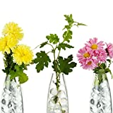 Hicarer 10000 Pieces Vase Filler Beads Gems Water