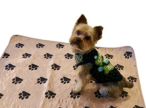 Large Dog and Puppy Pad: 2 Washable and Reusable Training Pee Pads for Small to Large Dogs or Puppies - Doggie Potty Train Supplies and Pet Essentials - Brown With Paw Print Design, 28 x 32 Inches
