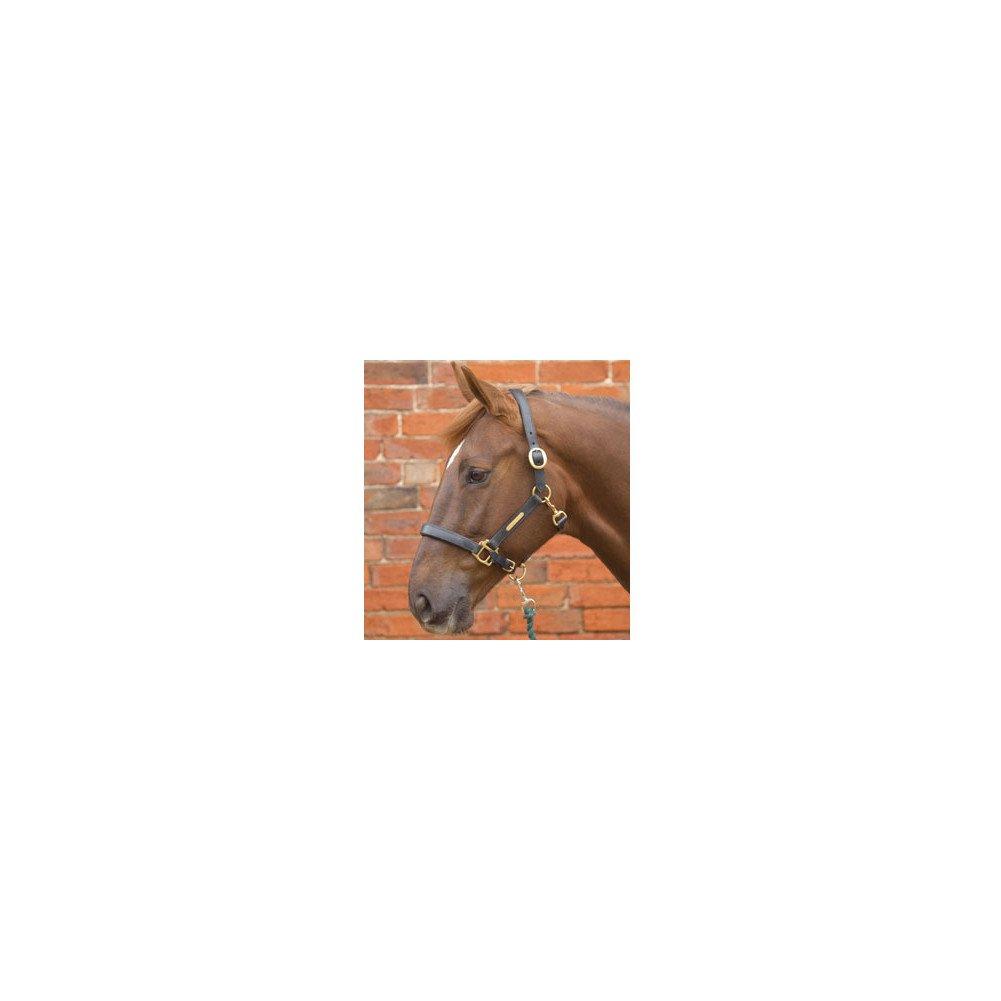 William Hunter Equestrian Hy - Cabezada de piel para caballo