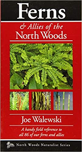 Ferns /& Allies of the North Woods A Handy Field Reference to All 86 of Our Ferns and Allies