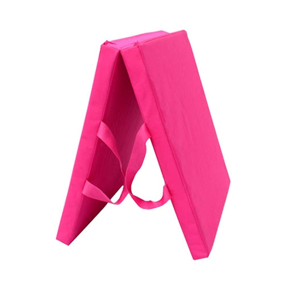 人気新品入荷 ZJ ヨガ ピンク、体操の中心の試しのための持ち運び用ハンドルが付いている二重5cmの厚い練習のマット 赤, - 多色およびサイズ (色 : : 赤, サイズ さいず : 70×150×5CM) B07R3T5WCF ピンク 60×120×5CM 60×120×5CM|ピンク, EsteeGrace:0c1787d1 --- arianechie.dominiotemporario.com