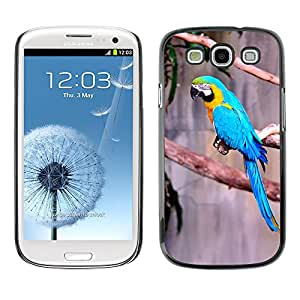 Super Stella Slim PC Hard Case Cover Skin Armor Shell Protection // M00146049 Macaw Parrot Exotic Bird // Samsung Galaxy S3 S III SIII i9300