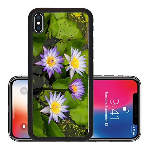 Liili Premium Apple iPhone X Aluminum Backplate Bumper Snap Case Seth purple lotus grow beautifully on your water garden in Thailand - Stores Watergardens