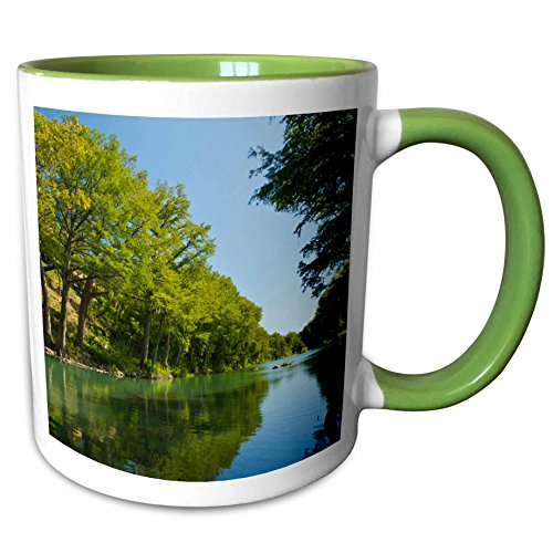 3dRose Danita Delimont - Rivers - Guadalupe River, Bald cypress, Gruene, Texas, USA - US44 LDI0936 - Larry Ditto - 11oz Two-Tone Green Mug - Cypress Outlet Texas