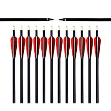 Albertu 1Dozen Outdoor Targeting Arrows Practical Archery Fiberglass Shaft with Plastic Vanes & 100 Grain Screw-In Arrow Tips