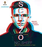 UC Schizo: A novel