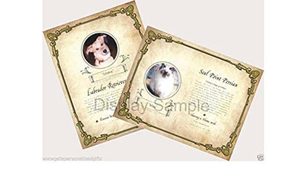 Proud Pet Pedigree with Mat Pet Pedigree Keepsakes,Pet Certificates,Dog Pedigree,Pet Poems,Personalized Pet Prints,Pet Origins,Dog Lovers
