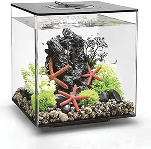 biOrb-CUBE-Aquarium-MCR-Schwarz