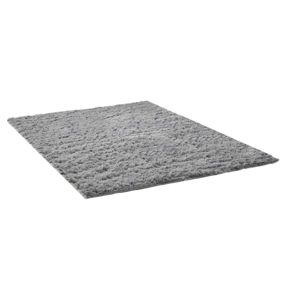 THEE Soft Rug Indoor Floor Mat Area Rugs Home Decor