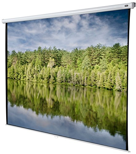 celexon 156'' Manual Economy 110 x 110 inches viewing area, 1:1 format, Manual Pull Down, Wall or ceiling mounting, Gain 1.0 by Celexon