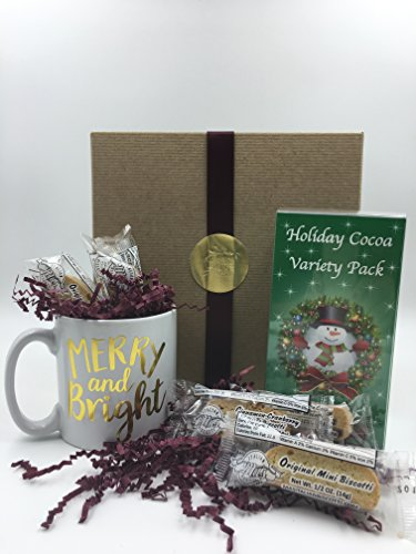 Hot Chocolate Gift Set - Merry & Bright Mug, Cocoa Mixes & Mini Biscotti, Perfect Gift for Coworkers, Friends, Boss, Teachers and More