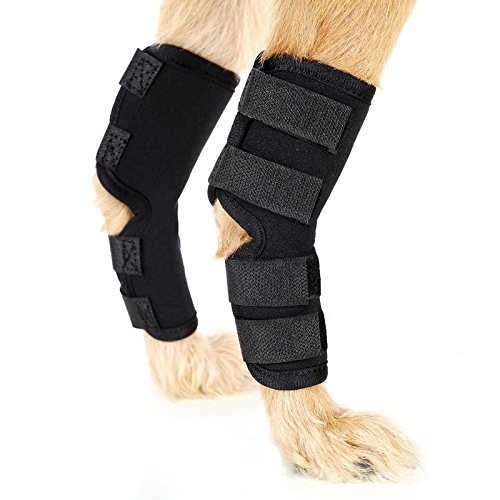 Rear Leg Splint - 7