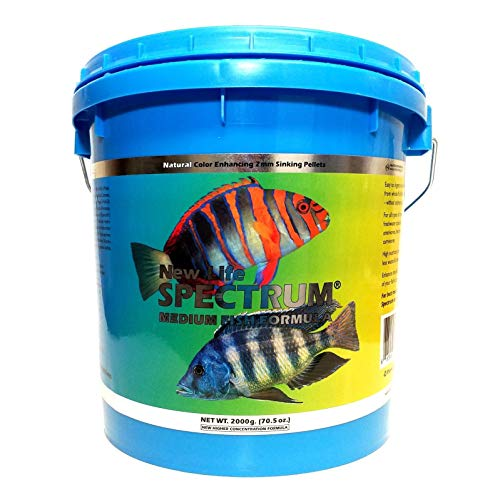 New Life Spectrum Medium Fish 2mm Sinking Pellets 2200 Gram Bucket - with 1/4-lb California Blackworm & Ultra Intense Coloring Mixed Size Pellets Included