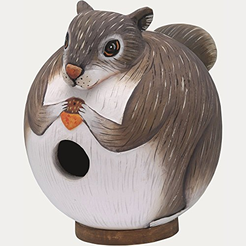 Songbird Essentials SE3880086 Squirrel Gord-O Birdhouse (Set of (Songbird Essentials Squirrel)