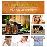 Pure Ginger Oil, Natural Lymphatic Drainage