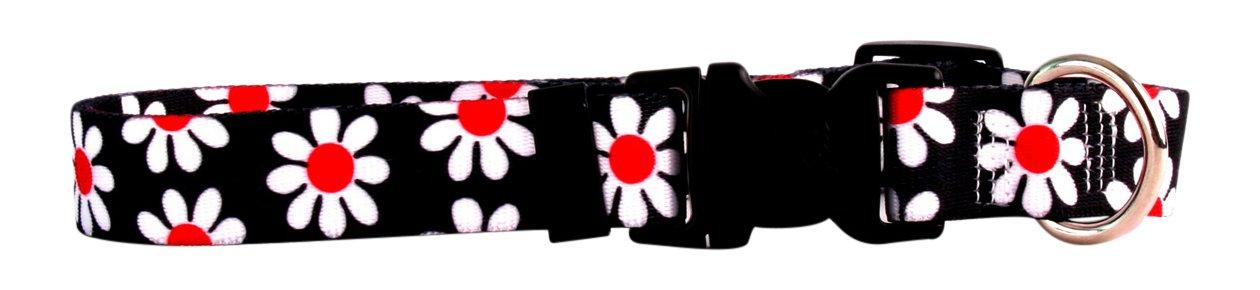 Yellow Dog Design Black Daisy Dog Collar Fits Neck 14 to 20'', Medium 1'' Wide