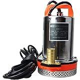 BACOENG DC 24V Farm & Ranch Solar Water Pump Submersible Well Pump 23ft Lift