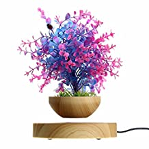 RioRand LED Levitating Air Bonsai Pot - Magnetic Levitation Suspension Flower Floating Pot Potted Plant for Home Office Decor - Gift Option