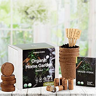 Indoor Herb Garden Image
