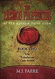 The Patmos Prophecies (Book Volume 2)