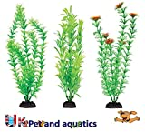 Penn-plax Aquariums Review and Comparison