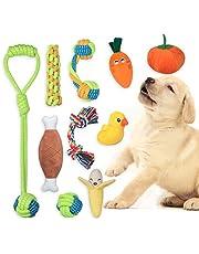 Angelland Fonpoo Grupo de Juguetes para Perros Durable Masticable Cuerda Soledad Grupo de Juguete para Perrito Pequeño Medio Solitario para Mantener a su Perro Sano 10 Piezas