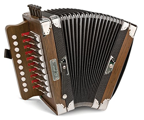 Which are the best accordion ariette available in 2019?