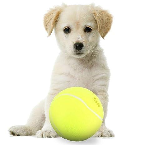 Yosoo 9.5 grande pelota de tenis Pet Toy Mega Jumbo Perros Play ...
