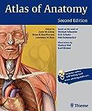 Msc clinical anatomy