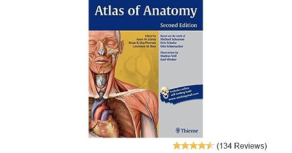 Atlas of Anatomy: 9781604067453: Medicine & Health Science Books ...