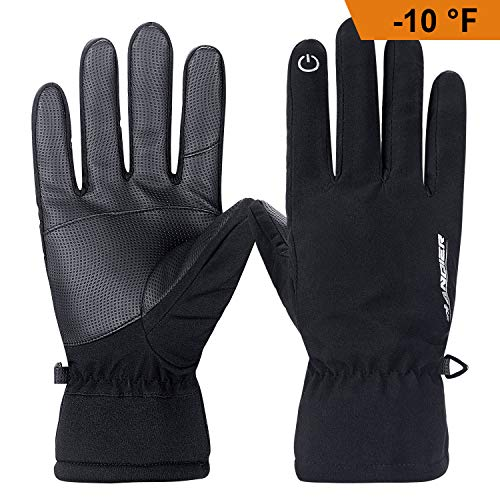 Lanyi Winter Touchscreen Gloves -10(-23) for Men Women 6M Thinsulate Windproof Waterproof Thermal Thick Fleece Gloves Snowboard Cycling Ski Outdoor Sports Cold Weather Gloves(X-Large)