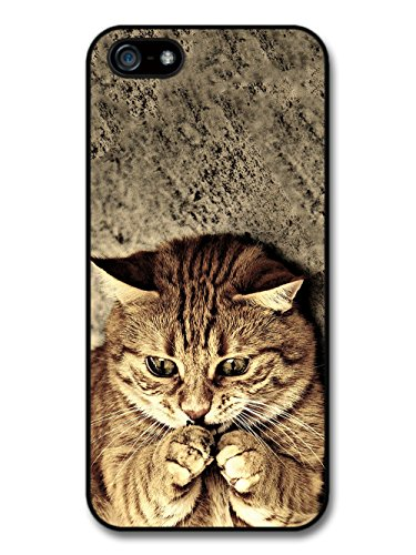Cool Cute Funny Cat Meme Animal Nature case for iPhone 5 5S