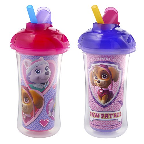 Munchkin Paw Patrol Click Lock Insulated Straw Cup, 2 Count (Kids Sippy Cups Insulated compare prices)