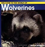 Welcome to the World of Wolverines (Welcome to the World Series)