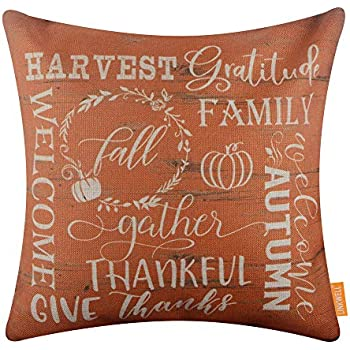 LINKWELL Farmhouse Autumn Pillow Cover 18x18 inch Decorative Cushion Case Accent Home Decoration Vintage Orange Harvest CC1673