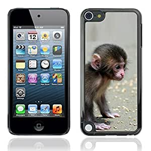 Beautifulcase Cute Lilttle Monkey Animal Design case cover for Apple VRBI7Bt6kFl iPod Touch 5th Generation 5G