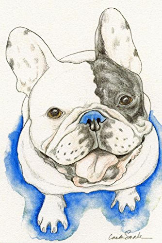 Pied French Bulldog (Pied French Bulldog Limited Edition Print-Pet Dog Art-Carla Smale)