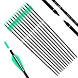 Archery Carbon Hunting Arrows for Compound & Recurve Bows - 30 inch Youth