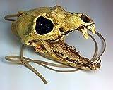 Aztec Death Whistle - Carnivore