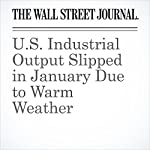 U.S. Industrial Output Slipped in January Due to Warm Weather | Eric Morath,Josh Mitchell