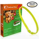 Beloved Pets Flea Collar (100% Safe and effective) - Flea Control Collar for Dogs and Puppies. Quick and long lasting protection. (Medium, Green)