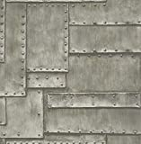 Wallpaper Cool Industral Looking Faux Sheet Metal with Screws, Looks Real Up!