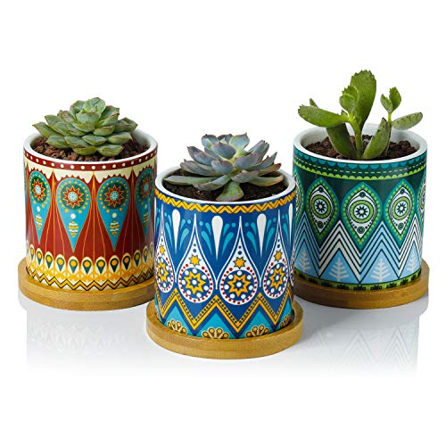Greenaholics Succulent Plant Pots - 3 Inch Mandalas Pattern Cylinder Ceramic Planter for Cactus, with Drainage Hole, Bamboo Trays, Idea, Set of 3 ()
