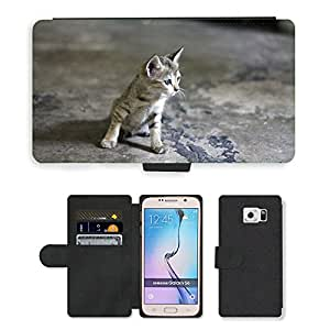 Super Stella Cell Phone Card Slot PU Leather Wallet Case // M00148559 Cat Animal Kitten Kitty Looking // Samsung Galaxy S6 (Not Fits S6 EDGE)