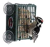 Kettle Moraine Window Mount Single Suet Cake Woodpecker Bird Feeder Review