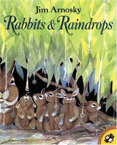 Rabbits And Raindrops: Jim Arnosky: