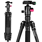 "Mactrem Camera Tripod, 62.5"" Lightweight Alluminum Alloy DSLR tripod ball head Travel Tripod, Detachable Monopod, Carry Case for Video/Projector Tripods, ( Load: 33lbs, Weight: 2.9lbs) Black CT62"