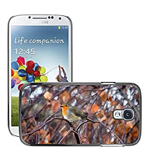 Hot Style Cell Phone PC Hard Case Cover // M00108988 Robin Animals Nature Bird // Samsung Galaxy S4 S IV SIV i9500